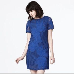 Dear Creatures Royal Blue Cutout Dress LIKE NEW